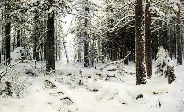 художник Шишкин. Зима